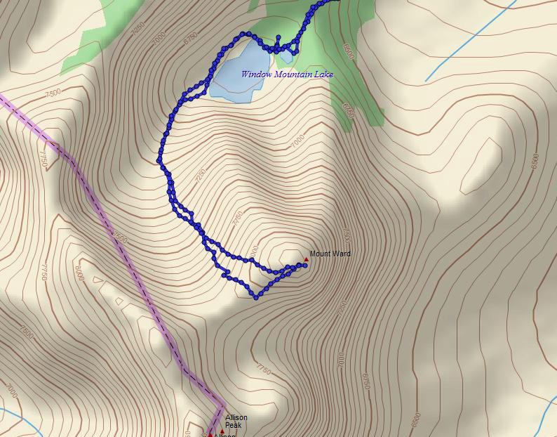 mount ward topo.jpg